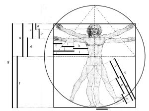 Leonardo da Vinci's interpretation of Vitruvius.