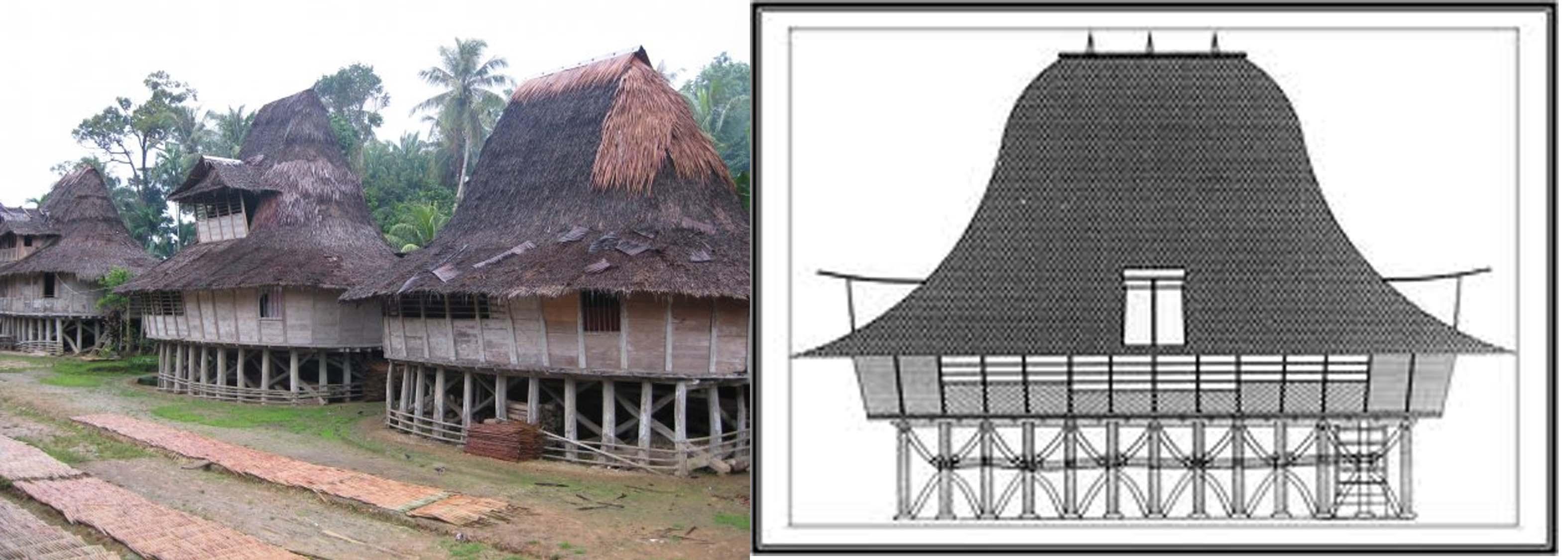 Pola Rumah Adat Toraja - Berita Jakarta