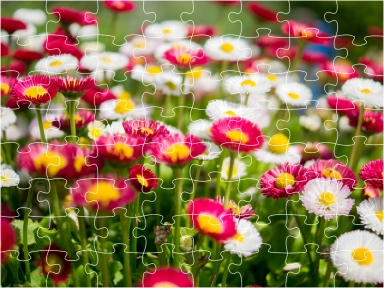 1280px-Jigsaw_Puzzle