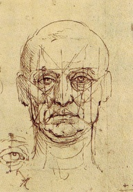 da-vinci-proportions-of-face-and-eye